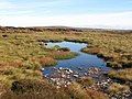 Small lough on Knoutberry Hill - geograph.org.uk - 575500.jpg