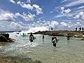 Snapper Rocks, Coolangatta, Gold Coast, Queensland 01.jpg