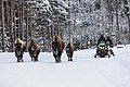 Snowmobiles passing bison on the road (2) (b19462f1-5f17-4249-acc1-813d1a7f0e31).jpg