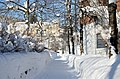 Snowy walking path Drammen 02.19 (2).jpg
