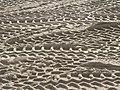 Southbourne beach replenishment, digger tyre-marks - geograph.org.uk - 719318.jpg
