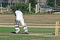 Southwater CC v. Chichester Priory Park CC at Southwater, West Sussex, England 061.jpg
