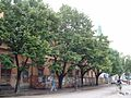 Stara zgrada Narodnog pozorišta Subotica 20.jpg