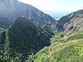 Starr-151005-0211-Aleurites moluccana-aerial view makai-West Maui-Maui (25680097533).jpg