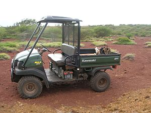 Side by Side (UTV) - Kawasaki Mule