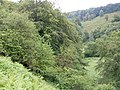 Steep and wooded side of the river - geograph.org.uk - 469248.jpg