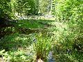 Steinbach-Klause, NP Bayerischer Wald.jpg