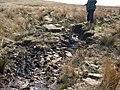 Stepping Stones - geograph.org.uk - 623524.jpg