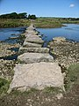 Stepping stones over Afon Braint - geograph.org.uk - 522204.jpg