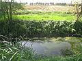 Stezzano- parco agricolo ecologico.JPG