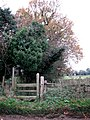 Stile and footpath - geograph.org.uk - 615027.jpg