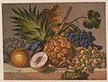 Still life with various fruits LCCN2003670279.jpg