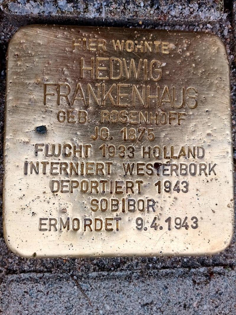 Stolperstein Hedwig Frankenhaus.jpg
