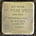 Stolperstein für Dr. Bruno Spitzer.jpg