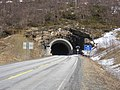 Storvikskaret-tunnel-south-2010-05-07.jpg