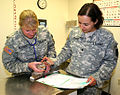 Stray mom cat gets a veterinary exam at West Point.jpg