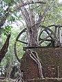 Sugar Mill, Lamanai 2010 02.jpg