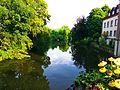 Summer - panoramio (22).jpg