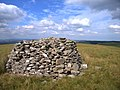 Summit cairn of Garn Gron - geograph.org.uk - 519412.jpg