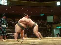 קטע וידאו קצר של התמודדות סומו. המתמודד השמאלי (Mankajō) ניצח