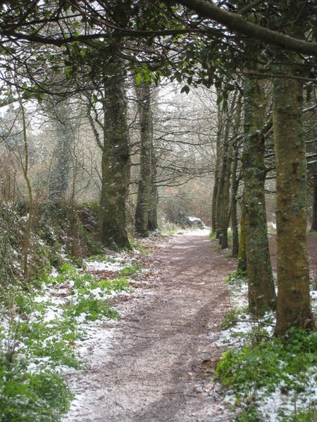 File:Sunshine and snow falling on the footpath to Durgan - geograph.org.uk - 1149785.jpg