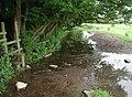 Swine Moor, Beverley - geograph.org.uk - 470178.jpg