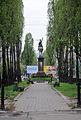 Szewczenki boulevard KYIV-39.JPG