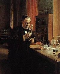 Estudio de microbiología de Pasteur