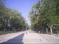 TalcaAlameda.jpg