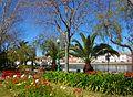 Tavira (Portugal) (17578416348).jpg