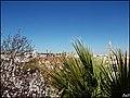 Tavira (Portugal) (33002180900).jpg