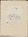 Testudo elephantopus - schild - 1700-1880 - Print - Iconographia Zoologica - Special Collections University of Amsterdam - UBA01 IZ11600077.tif