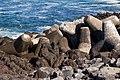 Tetrapods Graciosa Island 02.jpg