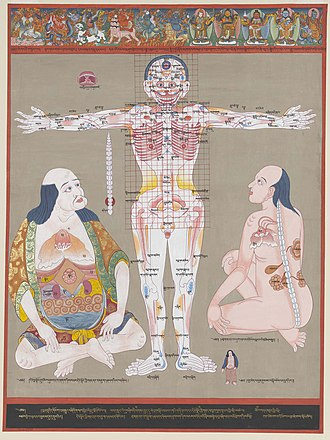 History of anatomy - Anatomy of vulnerable points, The Blue Beryl Anatomical Atlas by Desi Sangye Gyatso (1653–1705)