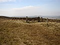 The Border Fence on Brownhart Law. - geograph.org.uk - 381561.jpg