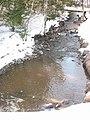 The Creek (17048081031).jpg