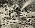 The Cuba review (1907-1931) (20617729439).jpg