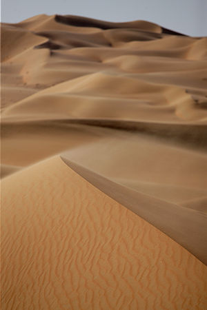 Patterns in nature - Natural patterns form as wind blows sand in the dunes of the Namib Desert. The crescent shaped dunes and the ripples on their surfaces repeat wherever there are suitable conditions.