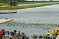 The Human Race triathlon - swimming - geograph.org.uk - 1309712.jpg