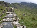 The Pyg track - geograph.org.uk - 885238.jpg