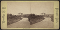 The city reservoir, from Robert N. Dennis collection of stereoscopic views 3.png