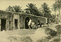 The gateway to the Sahara; observations and experiences in Tripoli (1909) (14598176370).jpg