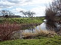 The moat at Thornton Farm - geograph.org.uk - 361924.jpg