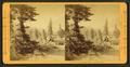 The shore of Lake Tahoe, near Tahoe City, by Muybridge, Eadweard, 1830-1904.png