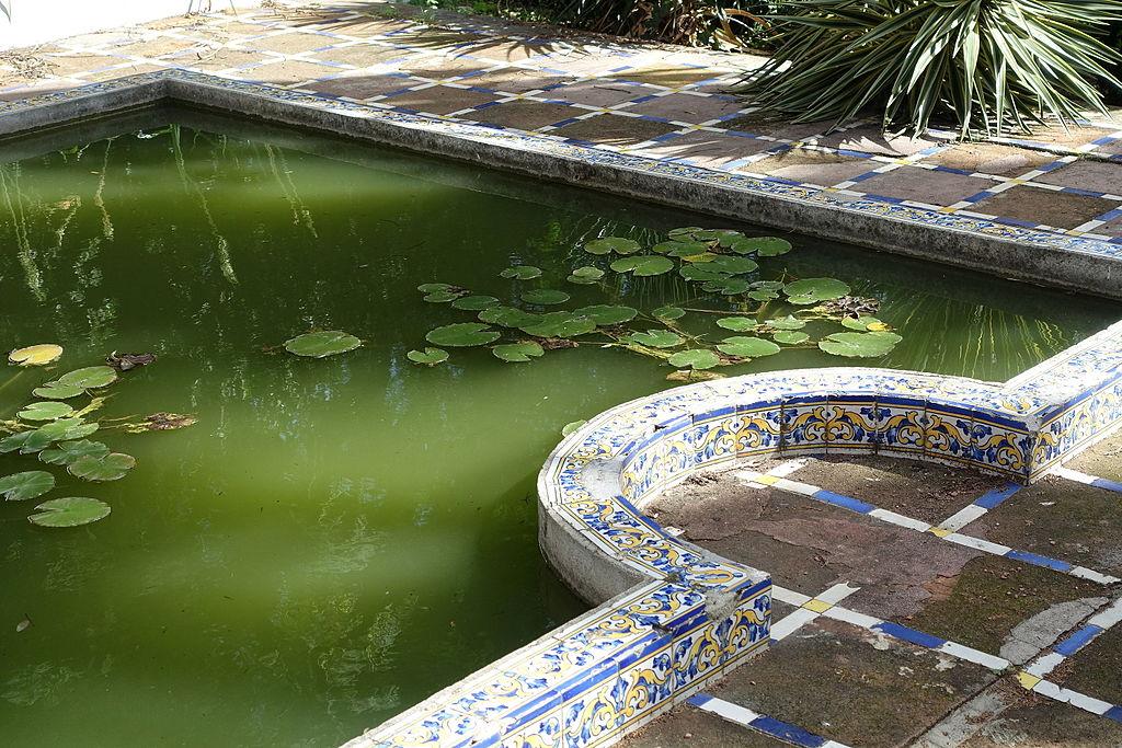 Bassin du jardin botanique de Belem à Lisbonne.