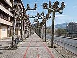Tolosa - Bidegorri 01.jpg