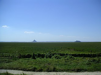 Tombelaine - Tombelaine and Mont Saint Michel seen from the saltmarsh