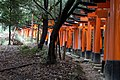 Torii in the forest (4160838856).jpg