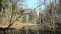 Toteisloch östlich Harpfetsham.jpg
