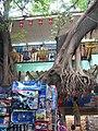 Toy tree (41862984).jpg